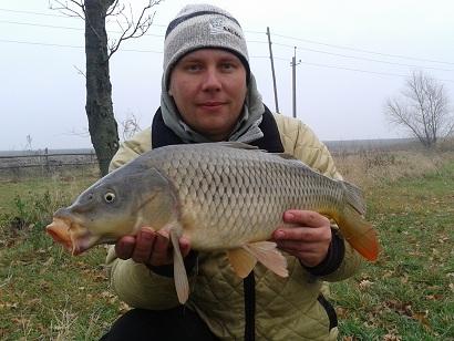 http://feeder.at.ua/2012/1011/fish1.jpg