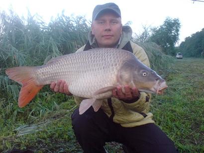 http://feeder.at.ua/2012/1908/fish2.jpg