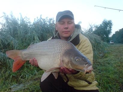 http://feeder.at.ua/2012/1908/fish3.jpg