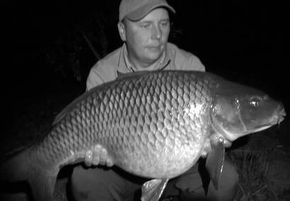 http://feeder.at.ua/2015/0208/fish1.jpg