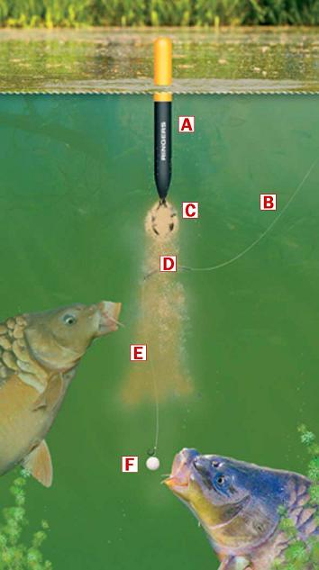 http://feeder.at.ua/carp/shema2.jpg