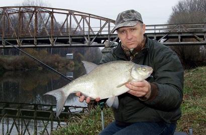 прикормка для усача в русской рыбалке 3