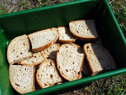 рыбалка хлеб прикормка