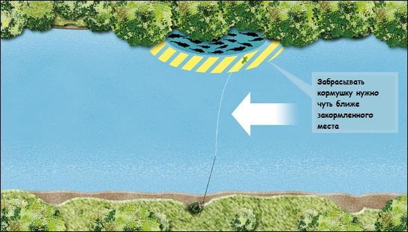 как забросить фидер на течении